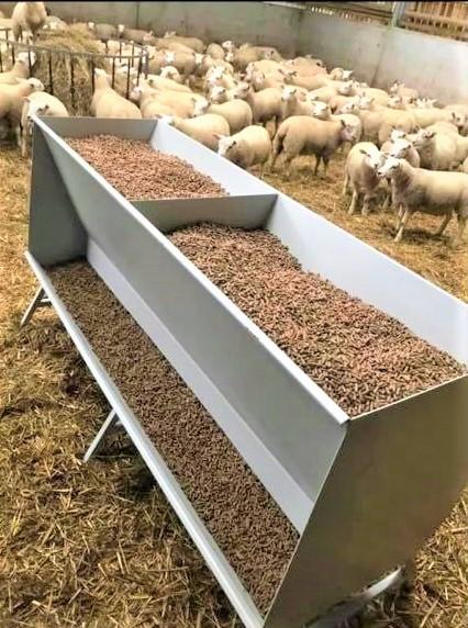 sheep feeders